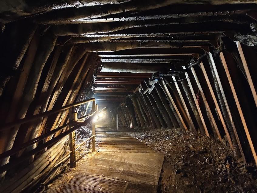 坑道牆壁使用相思木支撐防止塌落,稱作「牛條仔」
