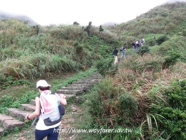 瑞芳登山步道一日遊茶壺山金瓜石山路