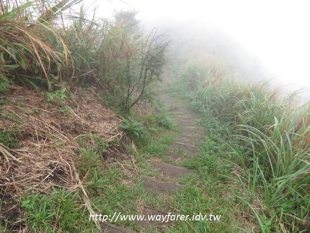 瑞芳登山步道一日遊枕木道路
