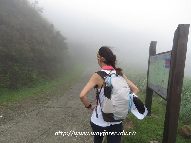 瑞芳登山步道一日遊起霧