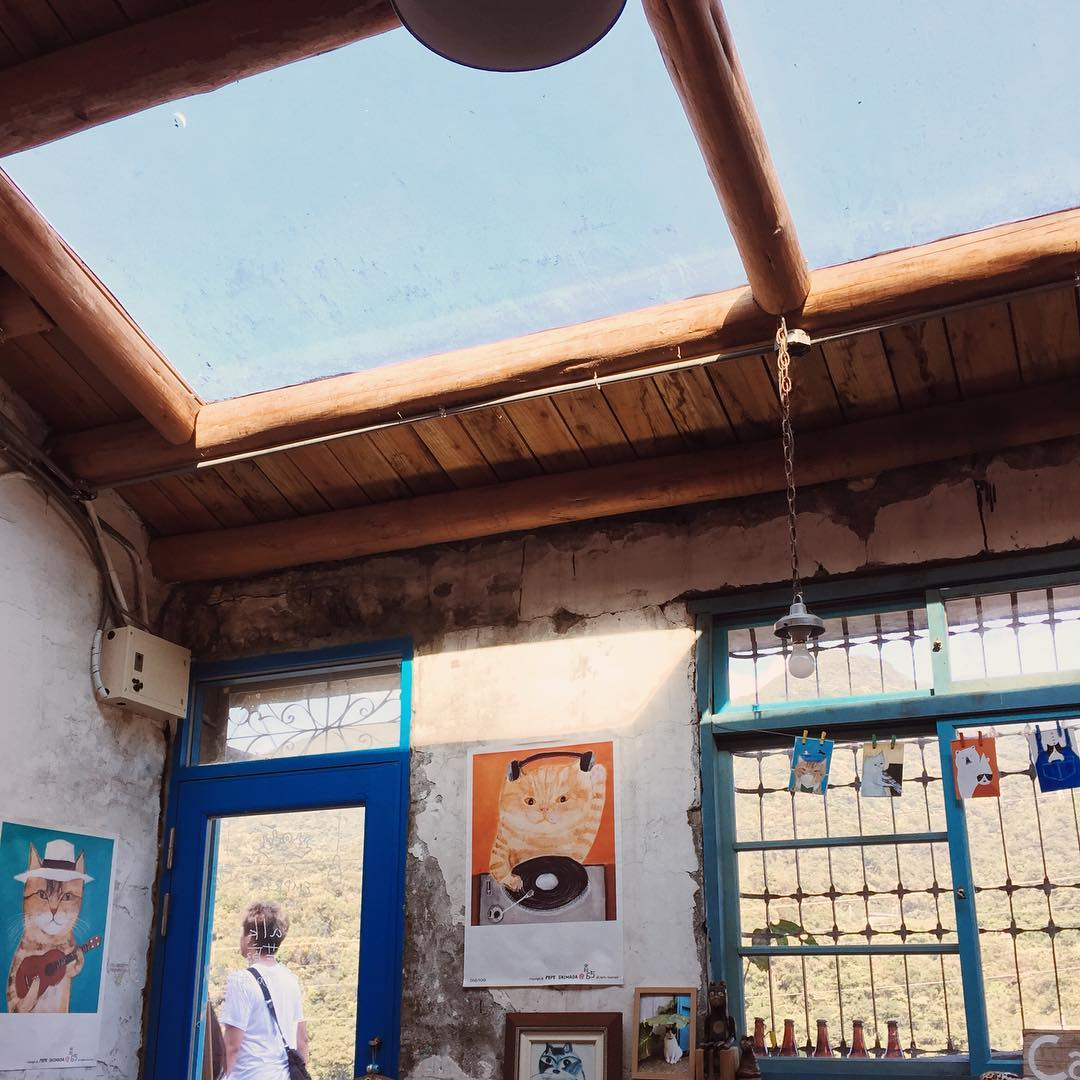 新北猴硐貓村  喵星人可愛攻勢來襲!【猴硐車站】交通、景點、伴手禮、主題咖啡廳